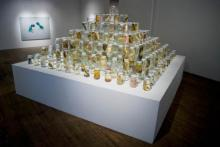 """Artwork titled """"Image Collision"""" by environmental artist and biologist Brandon Ballangee."""